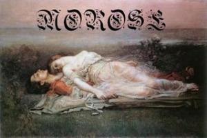 Morose - Opaque